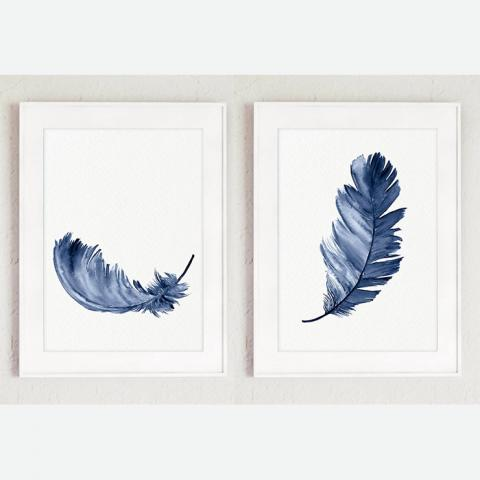 Royal Blue Feathers