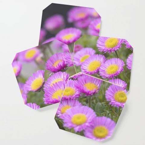 Purple Seaside Daisies Coasters